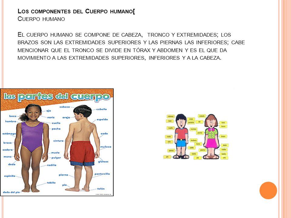 MINISTERIO DE EDUCACION dirección regional panamá centro escuela: FE ...